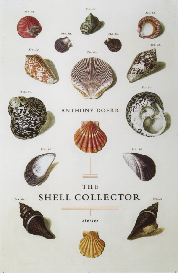 shell_collector